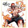 One Piece - Shikishi Portgas D Ace Ichiban Kuji C Prize