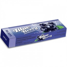 Lotte Blue Berry Stick Gym Goût Myrtille 13,5Gr